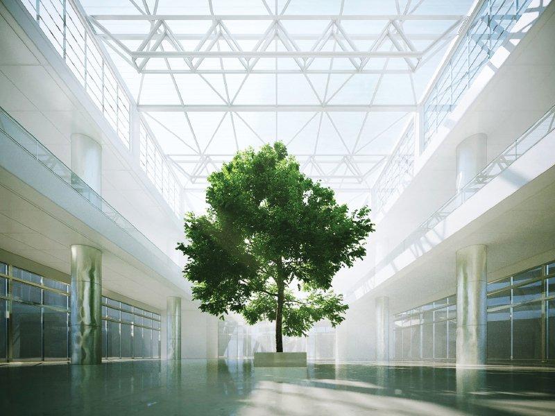 green nesite800x600 Nesite ottiene la certificazione Ambientale 14001