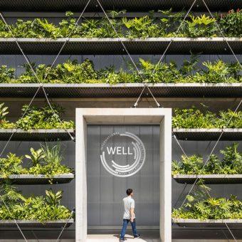 Certificazione WELL, i parametri del benessere