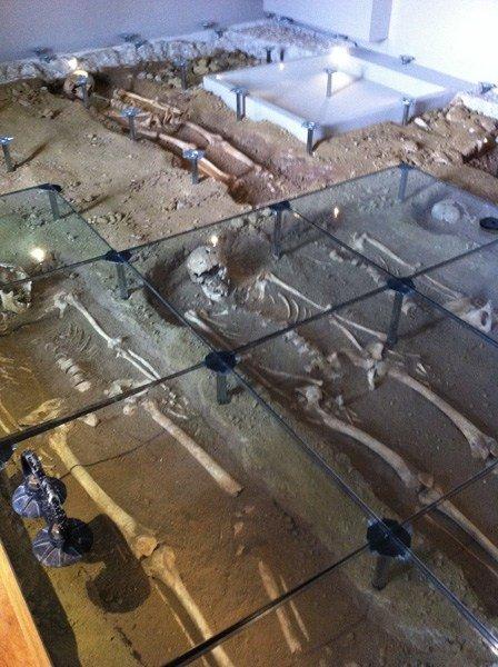 Nesite al museo archeologico di Pordenone