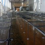 struttura mpm nesite pavimenti sopraelevati 150x150 Il nostro Twin Floor Outdoor per il Polo Intermodale di Ronchi
