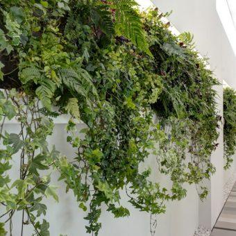 Pavimenti per edifici green Nesite