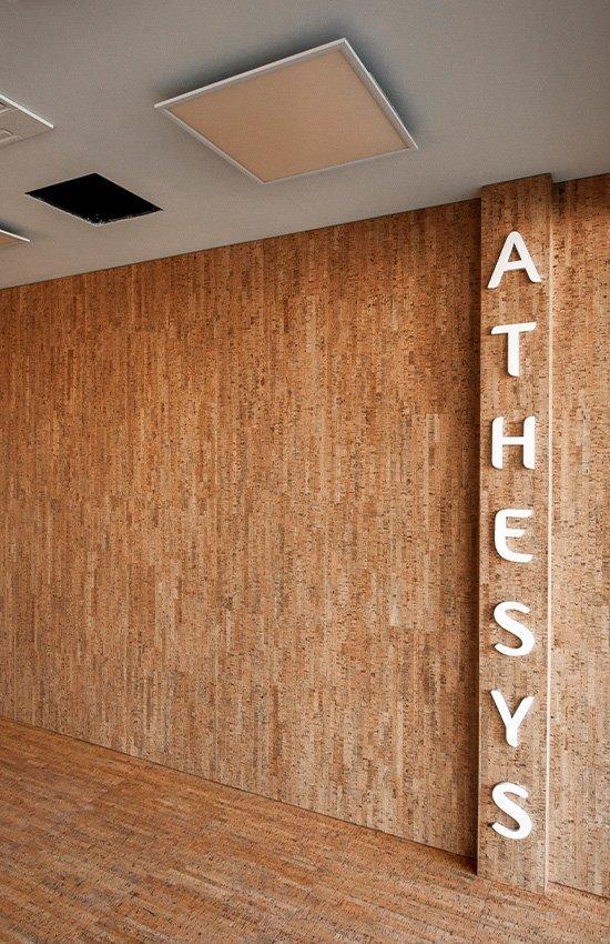 Athesys dettaglio interni