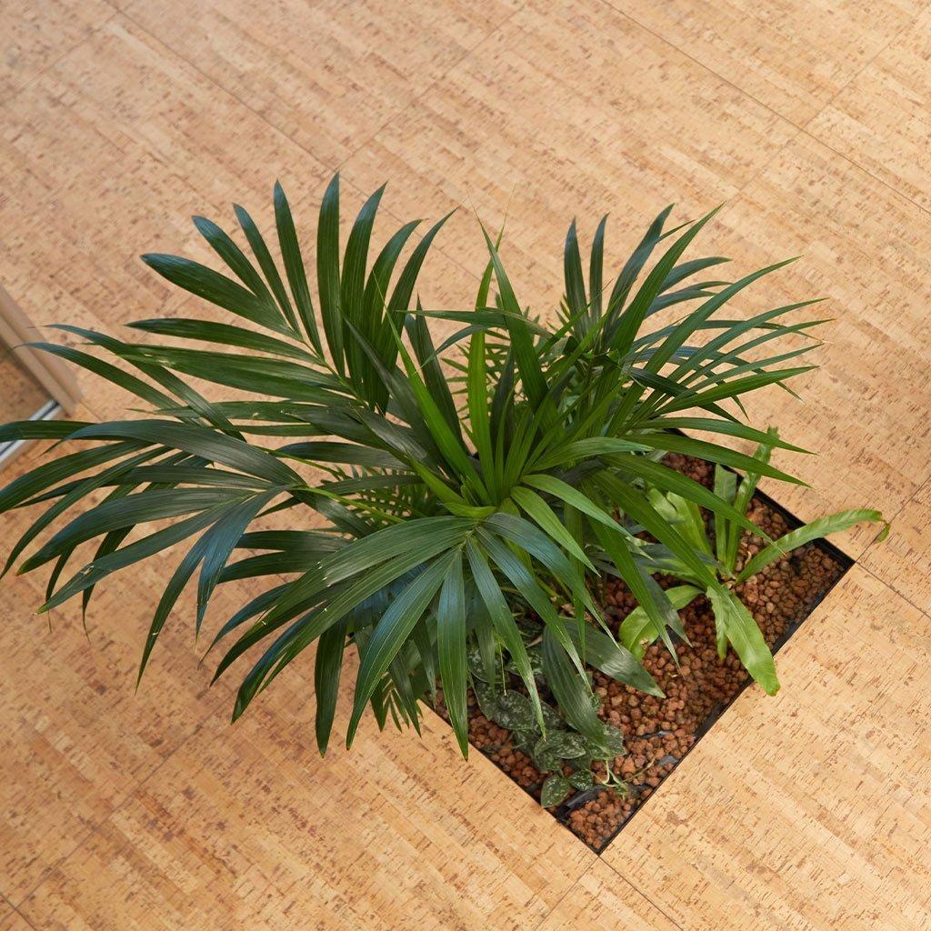 Floora, modulo piante per pavimenti sopraleevati