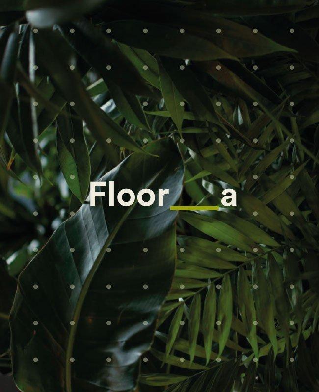Brochure Floora